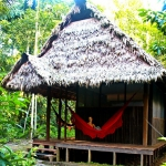 Private cabin with private bathroom / Casita exclusiva - Madidi Jungle