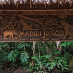 Sign Logo / Letrero (Madidi Jungle)