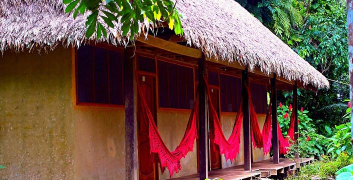Madidi Jungle Ecolodge shared cabin