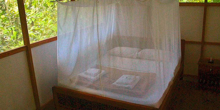 Madidi Jungle Ecolodge double bed